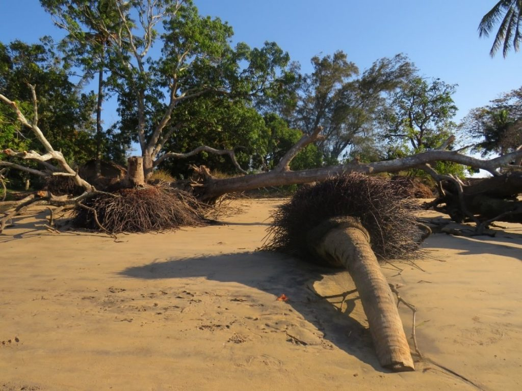 Effects of Coastal Erosion in Chinde, August 2019