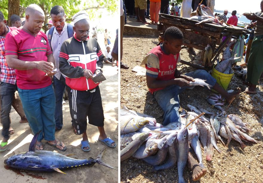 An informal transaction for a local hotel (left); preparing the latest catch for sale (right).