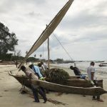 Fishers haul a fishing ngalawa onto the beach at Bagamoyo before the tide ebbs (Image: L.K. Blue)