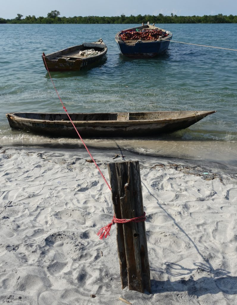 A range of fishing vessels—mtumbwe (front), ngwanda (rear left) and mtando (rear right)—moored on the waterfront at Mlingotini (Image: J.P. Cooper)