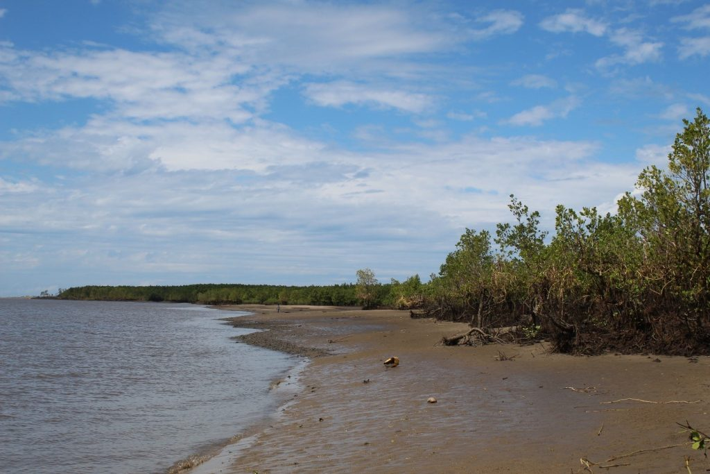 Clay extraction site. Mouth of the Chinde River