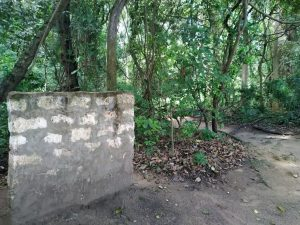 Entrance to Mtwapa Heritage Site- NB- No signage to identify the site