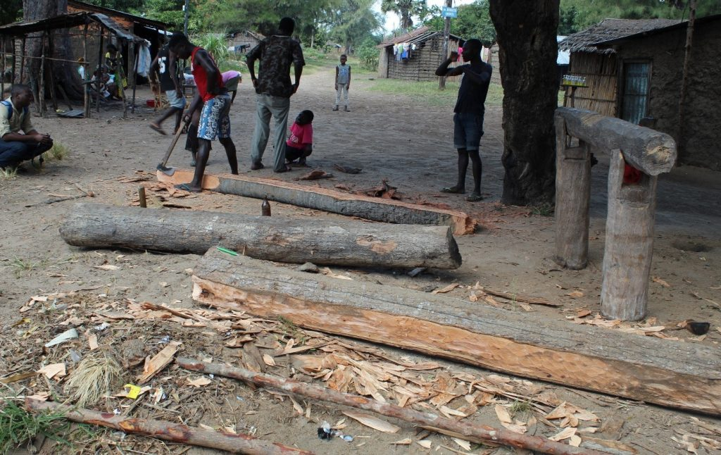 Mangrove tree sawmill in Bairro Amarelo, Chinde
